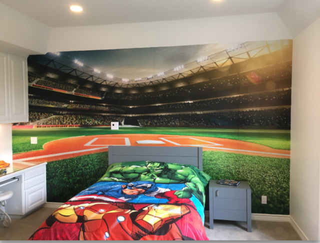 Wall Murals Decorate Boys Bedrooms for Orange County Family!