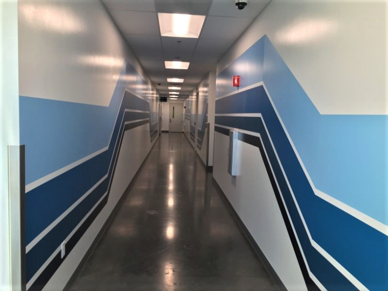 Geometric Wall Graphics in Long Beach CA