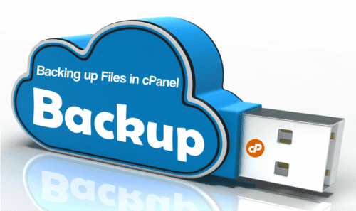 Website Backup and Recovery