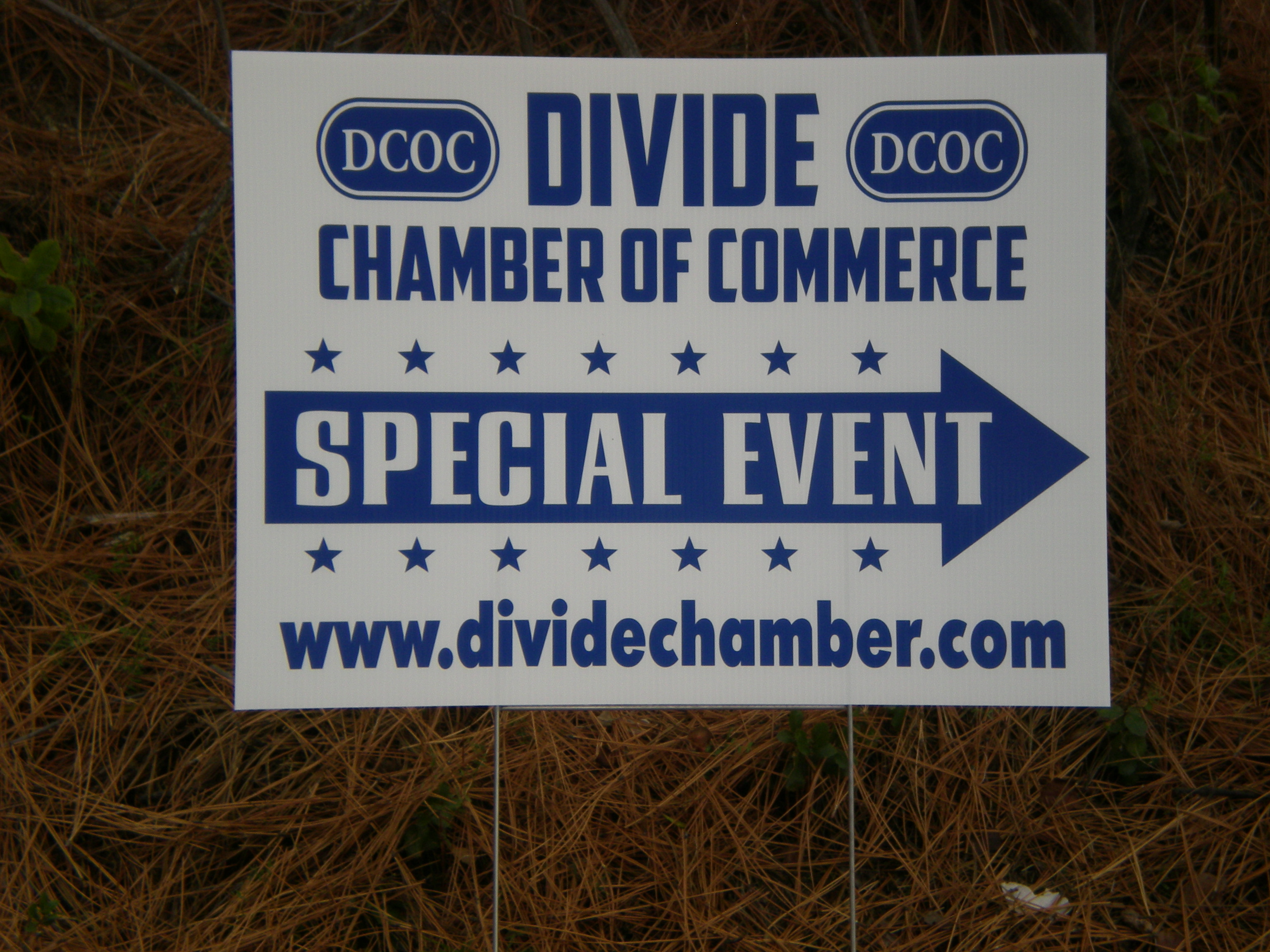 What Are Cut Vinyl Signs Or Cut Vinyl Lettering