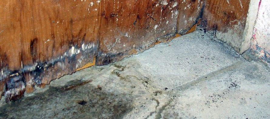 concrete floor damage