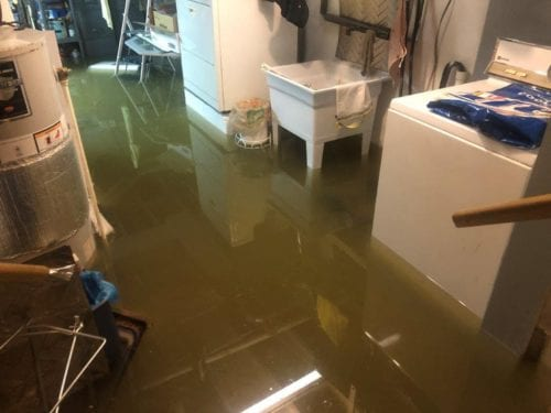 Why Hire a Professional to Clean Up Water Damage