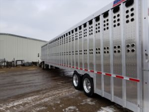 livestock semi trailer for sale