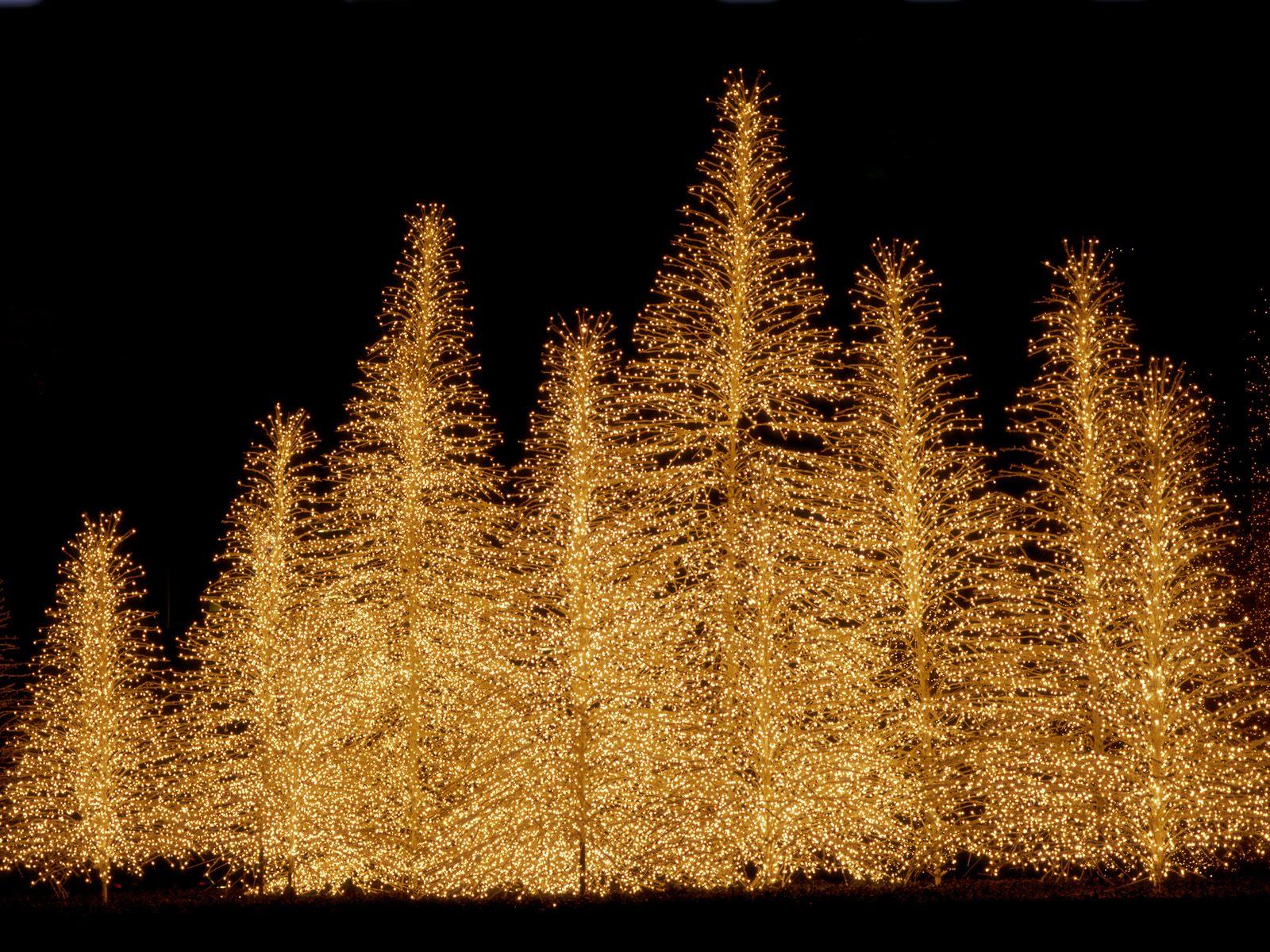 Christmas Lights Wallpaper Hd