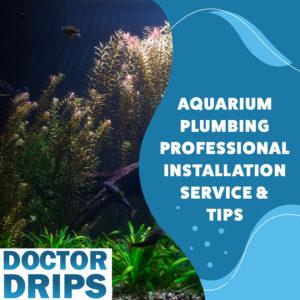Aquarium-Plumbing-Professional-Installation-Service-and-Tips