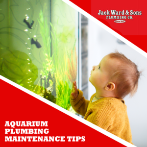 Small child watching a home plumbing aquarium after professional installation