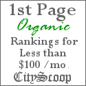 CityScoop's 1st Page Organic Ranking Service