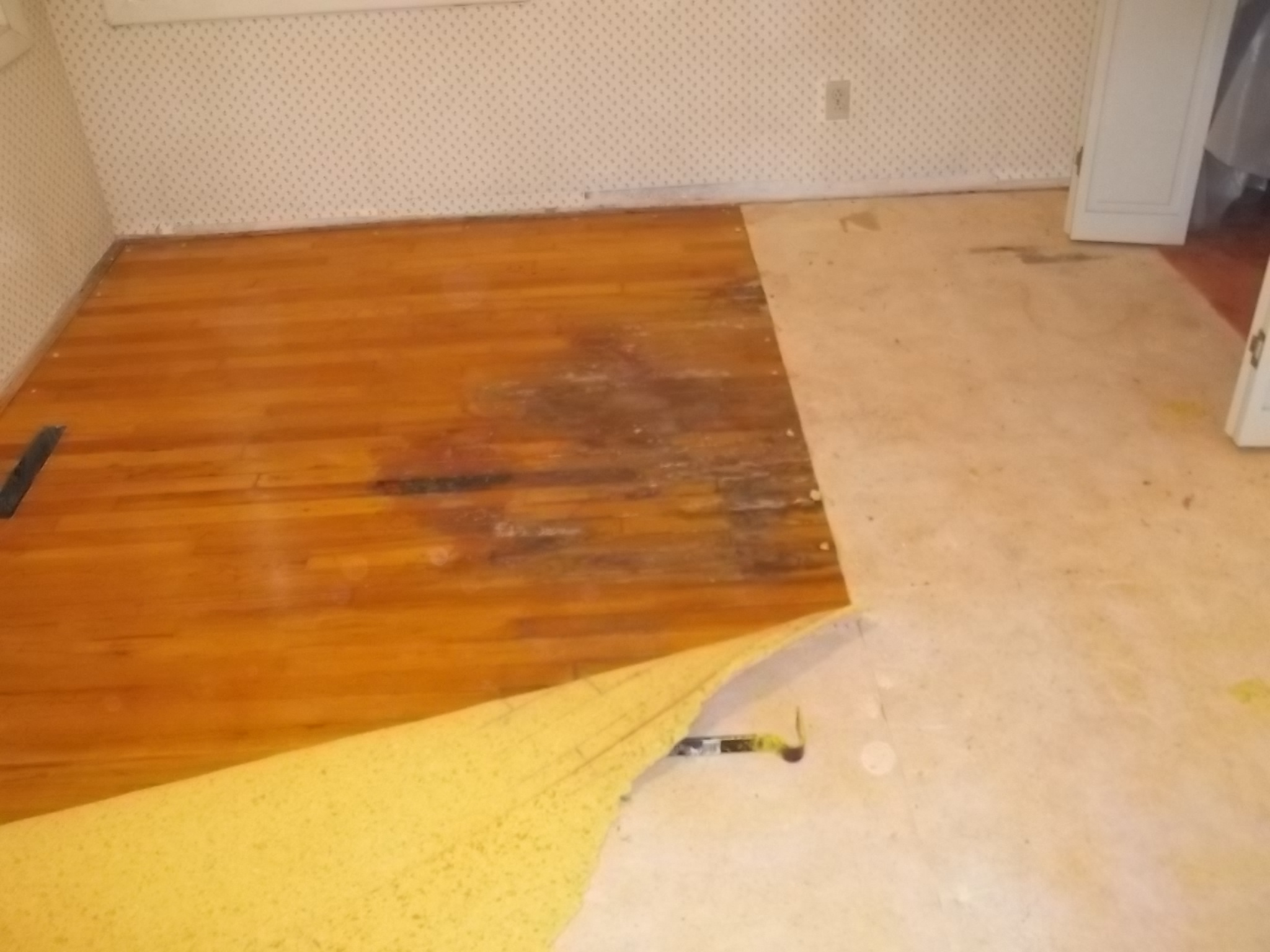 Water Damage Repair Wet Drywall Insulation And Flooring In Vernal
